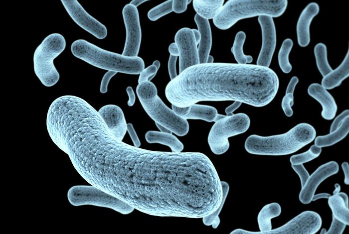 Dangerous Pathogens That Can Infect Your Portable Suction Unit
