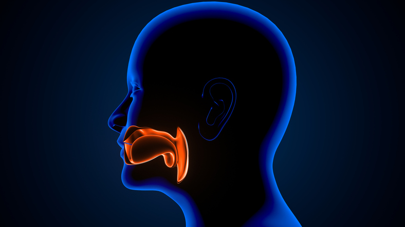 What You Need to Know About Nasal Suctioning a Patient